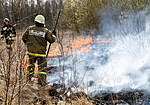 Spring burning in Kaliningrad Region, Russia